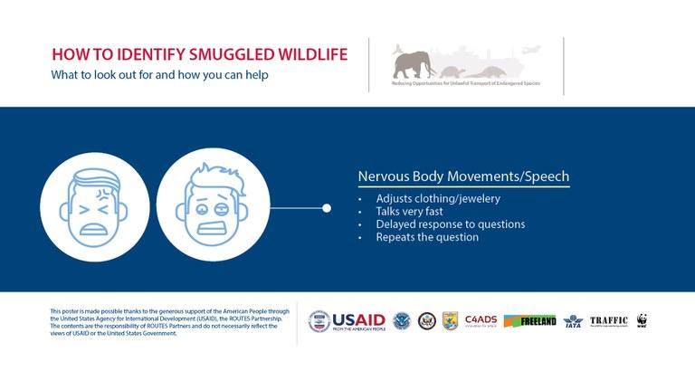 How to Identify a Wildlife Trafficker: Nervousness - Horizontal