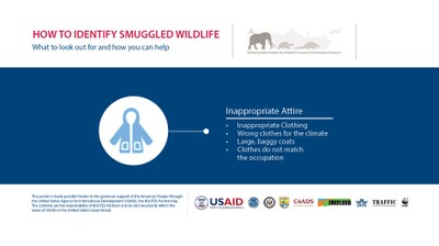 How to Identify a Wildlife Trafficker: Inappropriate Attire - Horizontal