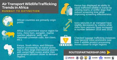 Africa Trends Runway.png