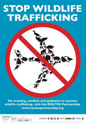 ROUTES Stop Wildlife Trafficking Awareness Poster