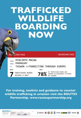ROUTES Trafficked Wildlife Boarding Now Bird Awareness Poster