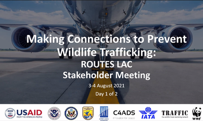 Key players in Latin America and the Caribbean's aviation industry connect to address wildlife trafficking