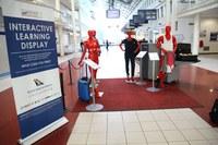 New Installation Raises Awareness of Wildlife Trafficking at Johannesburg Airport
