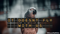 ROUTES launches 'Step Up to Stop Wildlife Trafficking' campaign